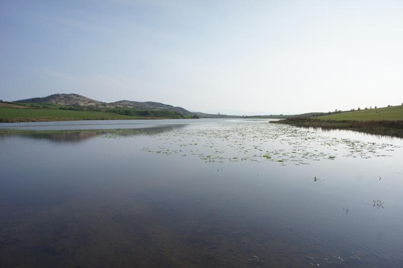 Greenan Loch